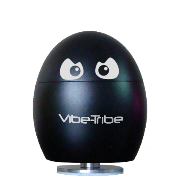 Vibe-Tribe-best-vibration-resonance-speaker-MP3-SDcard-Radio-FM-iphone-ovo